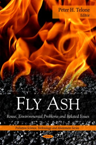 9781607416326: Fly Ash: Reuse, Environmental Problems and Related Issues (Pollution Science, Technology and Abatement)