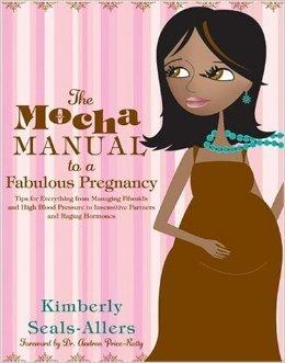 9781607511939: The Mocha Manual to a Fabulous Pregnancy