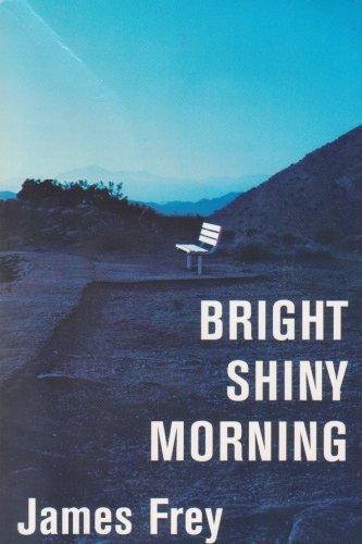 9781607512929: Bright Shiny Morning