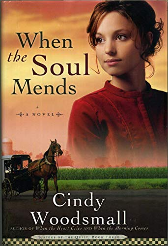9781607513063: When the Soul Mends
