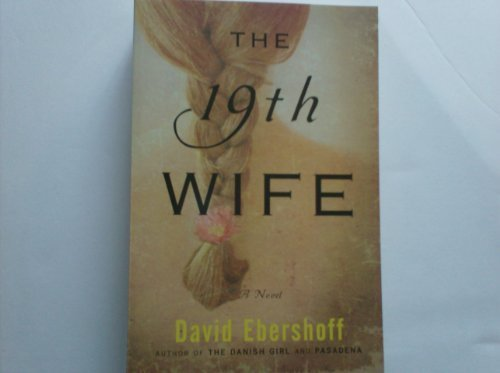 9781607517245: The 19th Wife, a Novel