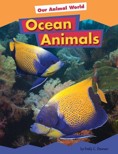 Ocean Animals (Our Animal World): Dawson, Emily C.