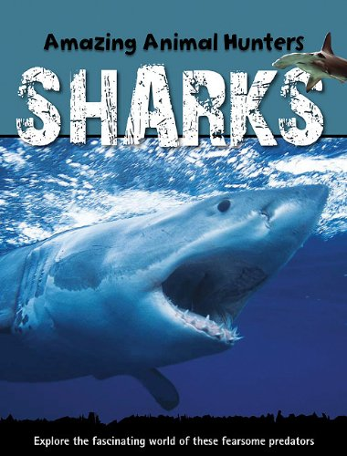 9781607530466: Sharks (Amazing Animal Hunters)