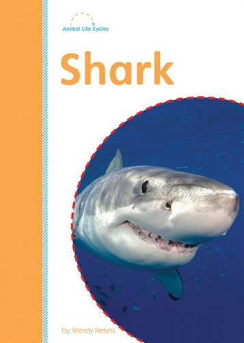9781607531548: Shark (Amicus Readers: Animal Life Cycles: Level 2)