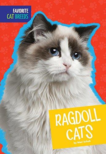 Ragdoll Cats (Hardcover): Mari C. Schuh