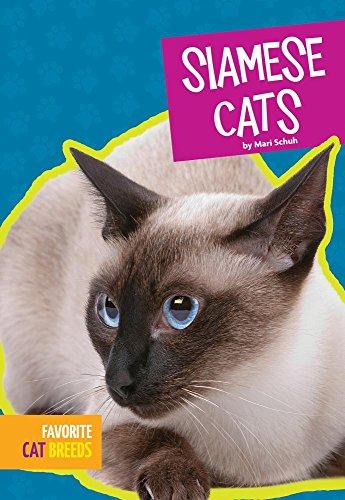 Siamese Cats (Hardcover): Mari C. Schuh