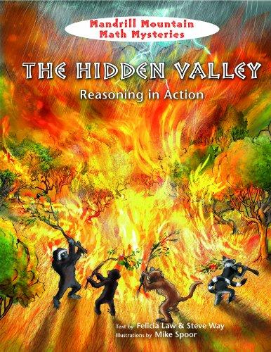 The Hidden Valley: Reasoning in Action (Mandrill: Spoor, Mike [Illustrator]