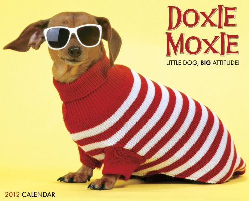 9781607553267: Doxie Moxie 2012 Calendar
