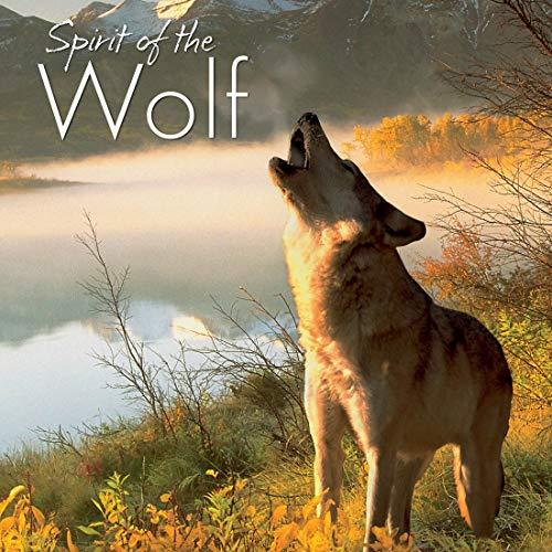 9781607554516: Spirit of the Wolf
