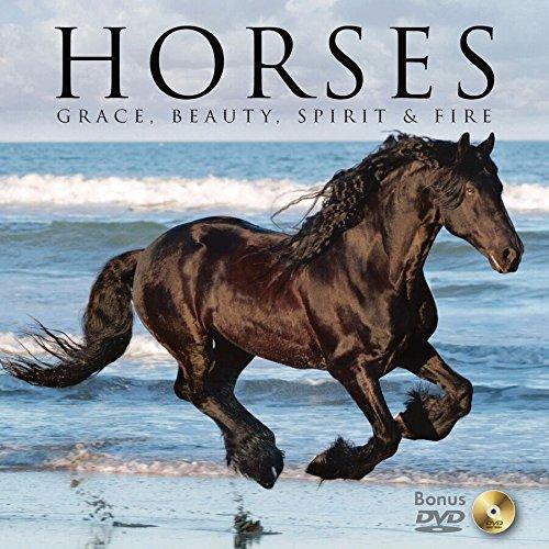 Horses: Grace, Beauty, Spirit & Fire: Willow Creek Press