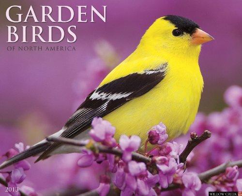 9781607555629: Garden Birds 2013 Wall Calendar
