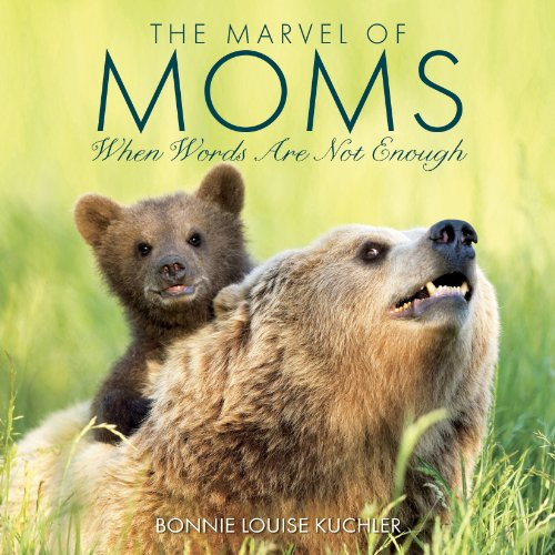 9781607556879: The Marvel Of Moms