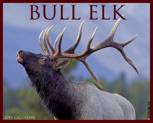 Bull Elk 2014 Wall Calendar: Willow Creek Press
