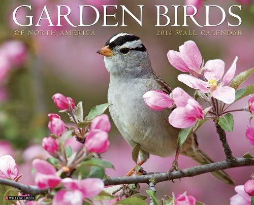 9781607558576: Garden Birds 2014 Wall Calendar