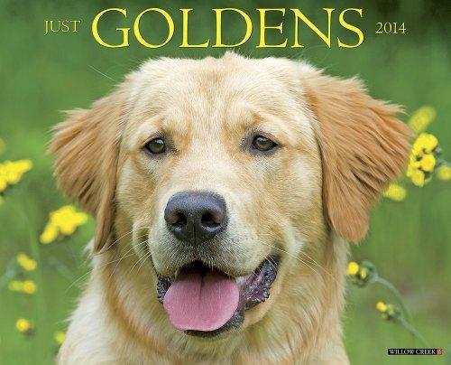 Just Goldens 2014 Wall Calendar: Willow Creek Press