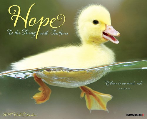 Hope Is The Thing With Feathers 2014 Wall Calendar: Willow Creek Press