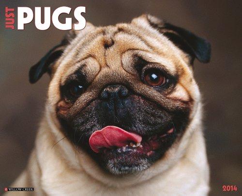 9781607559191: Just Pugs
