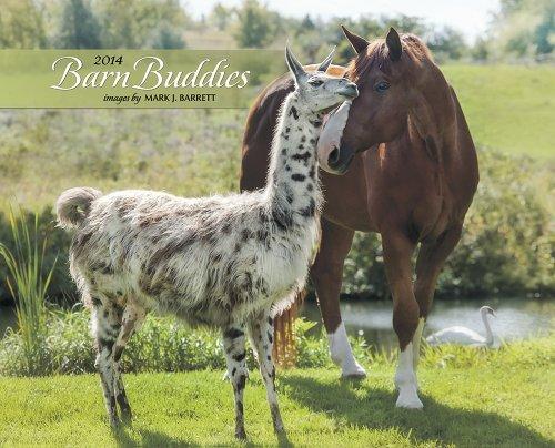 9781607559764: Barn Buddies 2014 Calendar