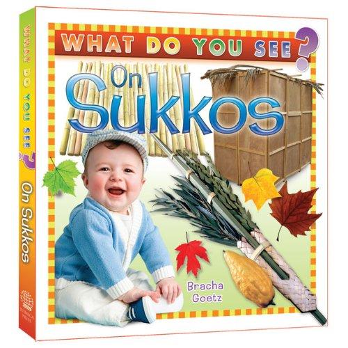 9781607630340: What Do You See on Sukkos?
