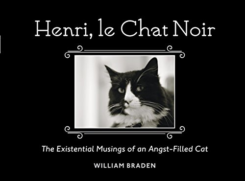 9781607745105: Henri, Le Chat Noir: The Existential Musings of an Angst-Filled Cat