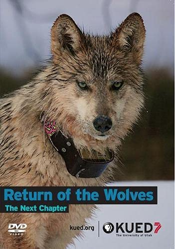 9781607813606: Return of the Wolves: The Next Chapter
