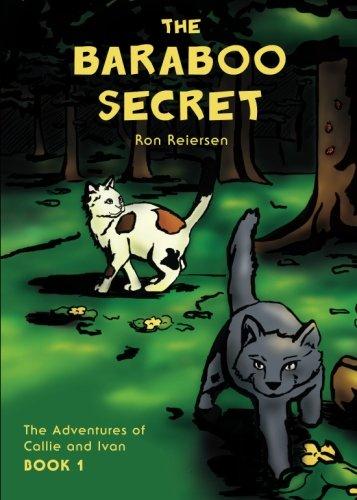9781607994817: The Baraboo Secret