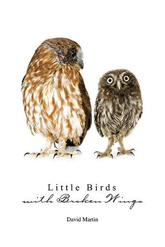 Little Birds with Broken Wings: Martin, David