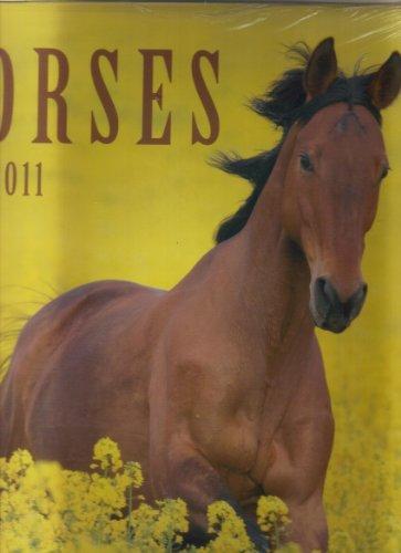 9781608173808: Horses 2011 Calendar
