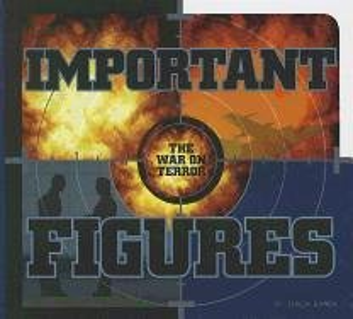 Important Figures (Hardback): Teresa Wimmer