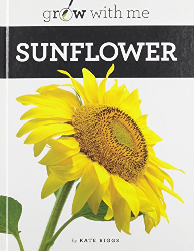 Sunflower (Hardcover): Kate Riggs
