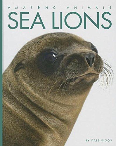 9781608183494: Sea Lions (Amazing Animals)