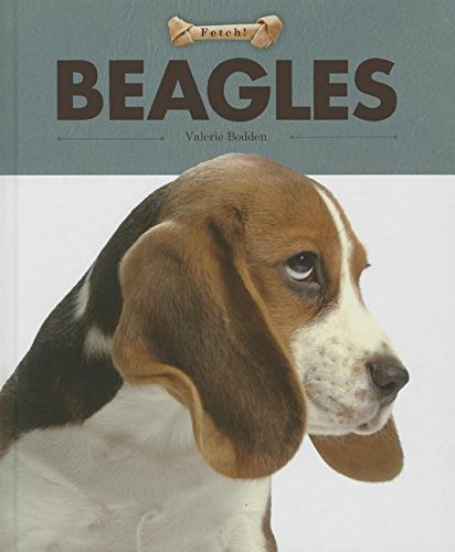 9781608183609: Beagles