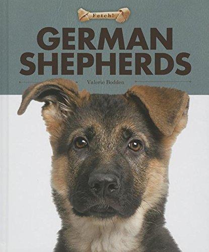 German Shepherds (Fetch! (Creative Education)): Bodden, Valerie