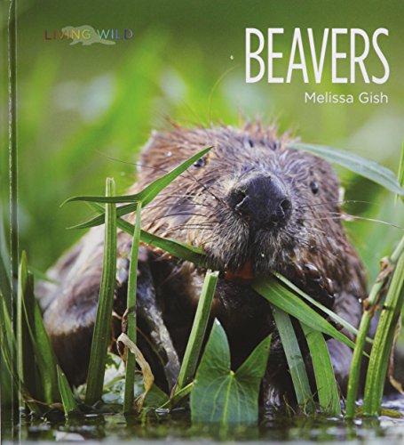 Beavers (Hardcover): Melissa Gish