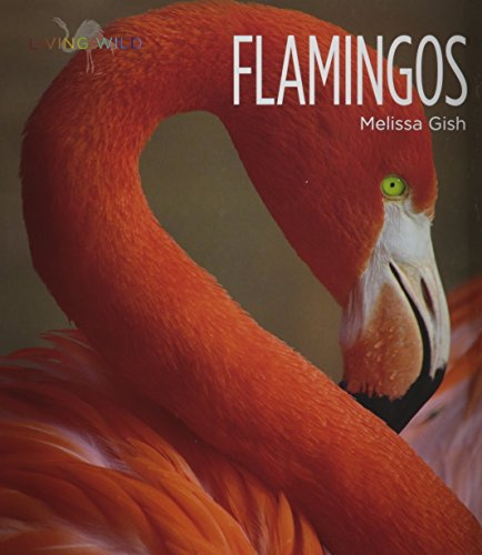 9781608184163: Flamingos (Living Wild)