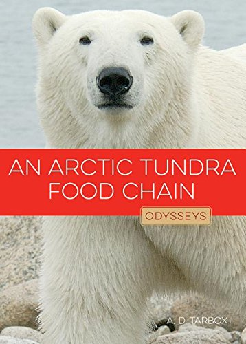 9781608185382: An Arctic Tundra Food Chain (Odysseys in Nature)