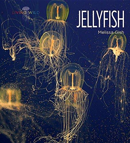 Jellyfish (Hardcover): Melissa Gish