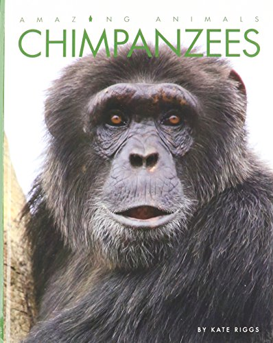 9781608186105: Chimpanzees (Amazing Animals)