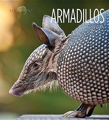 Armadillos (Hardcover): Melissa Gish