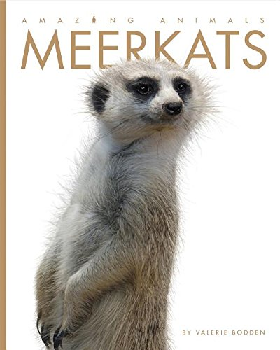 9781608187560: Meerkats (Amazing Animals)