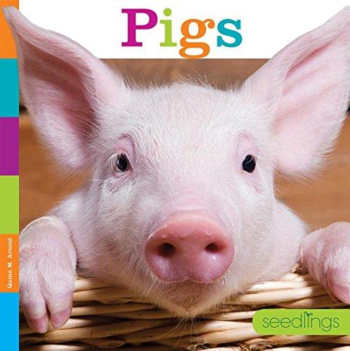9781608187874: Pigs (Seedlings)