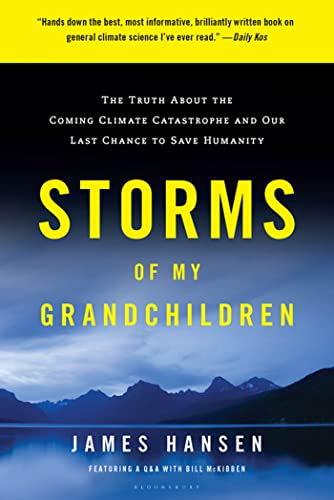 9781608195022: Storms of My Grandchildren: The Truth About the Coming Climate Catastrophe and Our Last Chance to Save Humanity