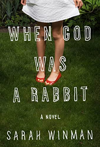 9781608195343: When God Was a Rabbit