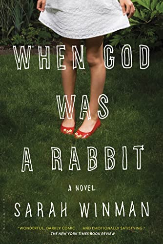 9781608195374: When God Was a Rabbit