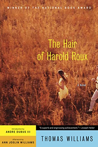 9781608195831: The Hair of Harold Roux: A Novel