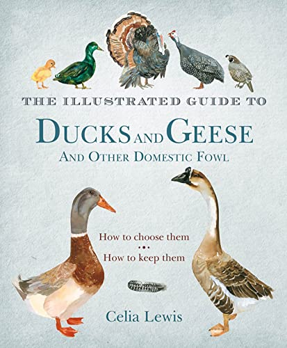 The Illustrated Guide to Ducks and Geese and Other Domestic Fowl: How to Choose Them. How to Keep ...