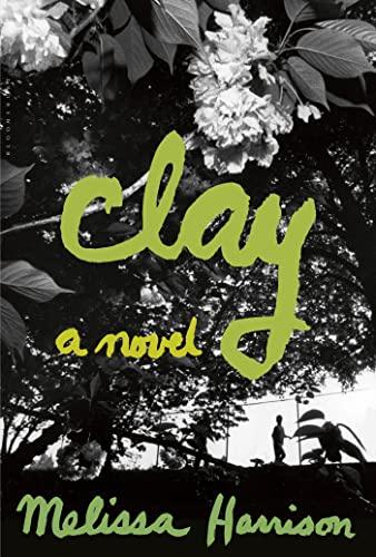 9781608199785: Clay: A Novel