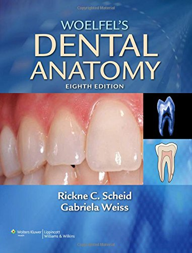 9781608317462: Woelfel's Dental Anatomy: Its Relevance to Dentistry