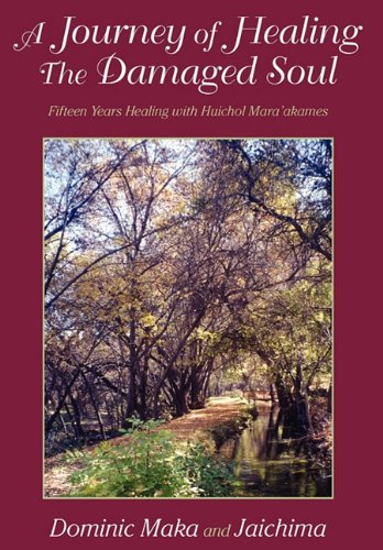 9781608445493: A Journey of Healing the Damaged Soul: 15 Years Healing with Huichol Mara'akames