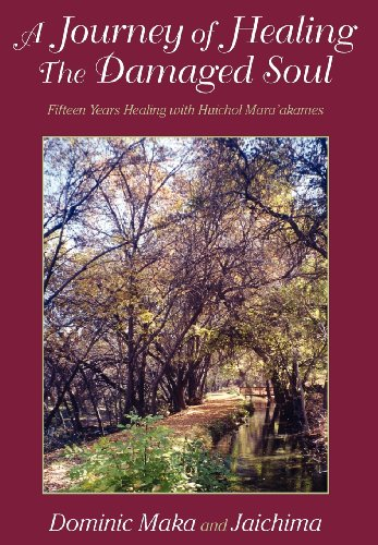 9781608445509: A Journey of Healing the Damaged Soul: 15 Years Healing with Huichol Mara'akames